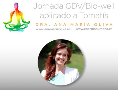 Jornada GDV/Bio-well